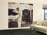 Ostrich in Profile Wall Mural – Large by Theo Westenberger