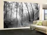 Autumn Forest With Fog And Lights Wall Mural – Large by  udvarhazi