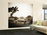 Giraffe and Friends Falcon Ridge Texas Wall Mural – Large by Theo Westenberger