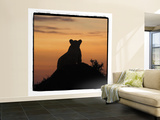 Radiant Africa 3 Wall Mural – Large by Susann Parker