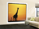 Radiant Africa 1 Wall Mural – Large by Susann Parker