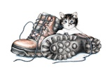 Boots and Kitten, 2012 Giclee Print by Sandra Moore