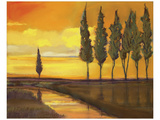Yellow Sunset over Water I Prints by Judith D'Agostino