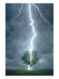 Lightning Striking Tree Prints