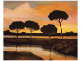 Sunset over the Arno River Prints by Judith D'Agostino