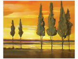 Sunset at Water's Edge Print by Judith D'Agostino