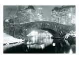 Winter im Central Park Kunstdrucke