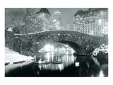 Winter in Central Park Print