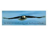 Inspiration - Adler, Englisch Poster