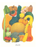 Marrows and Pumpkins Prints