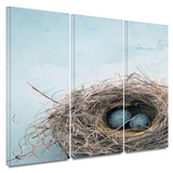 Blue Nest 3 piece gallery-wrapped canvas Posters by Elena Ray