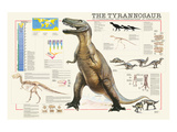 Tyrannosaurus Art by Libero Patrignani