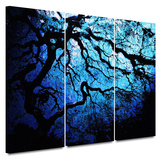 Japanese Ice Tree 3 piece gallery-wrapped canvas Posters by John Black
