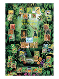The Tropical Rain Forest Prints