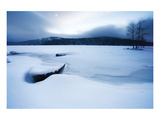 Lake of Woods Boat in Snow Print by Shane Settle