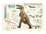 Tyrannosaurus Print by Libero Patrignani