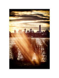 Instants of NY Series - Wild to Manhattan with the One World Trade Center at Sunset Photographic Print by Philippe Hugonnard