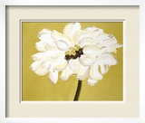 White Flower on Ochre Framed Giclee Print by Soraya Chemaly