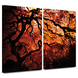 Fire Breather: Japanese Tree 2 piece gallery-wrapped canvas Posters by John Black