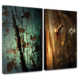 Wood and Nail 2 piece gallery-wrapped canvas Posters by Mark Ross