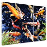 Koi 3 piece gallery-wrapped canvas Art by George Zucconi