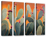 Cactus Orange 4 piece gallery-wrapped canvas Gallery Wrapped Canvas Set by Rick Kersten
