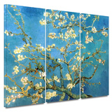 Almond Blossom 3 piece gallery-wrapped canvas Posters by Vincent van Gogh