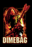 Dimebag Darrel - Fire Prints