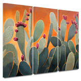 Cactus Orange 3 piece gallery-wrapped canvas Print by Rick Kersten