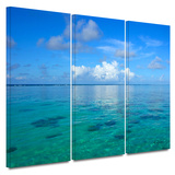 Lagoon and Reef 3 piece gallery-wrapped canvas Posters by George Zucconi