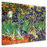 Irises in the Garden 3 piece gallery-wrapped canvas Print by Vincent van Gogh