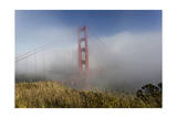 Golden Gate Bridge Tower in Fog 2 Photographic Print by Henri Silberman
