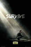 Walking Dead - Survive Posters