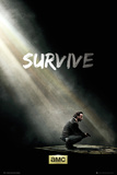 Walking Dead - Survive Prints