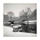 Lullwater Bridge Snow, Prospect Park Fotografisk tryk af Henri Silberman