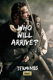 Walking Dead - Rick & Michione Survive Posters