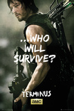 Walking Dead - Daryl Survive Stampe