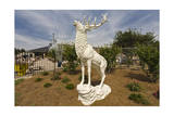 Garden Statue of Male Deer Raleigh, Nc Photographic Print by Henri Silberman
