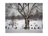 Prospect Park in Snow Photographic Print by Henri Silberman