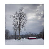 Red Barn in Winter Photographic Print by Henri Silberman