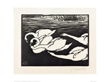 Swans Giclee Print by Félix Vallotton