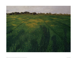 Green Oat Field Giclee Print by Félix Vallotton