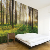 Sunbeam Wall Decal Wall Decal
