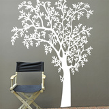 ONature White Wall Decal Wall Decal
