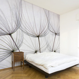 Dandelion Wall Decal Wall Decal
