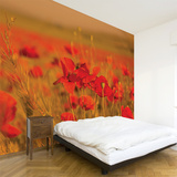 Field of Poppies Wall Decal Wall Decal