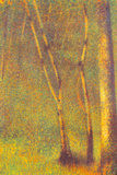 Georges Seurat Forest in Pontaubert Prints