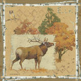Elk dark Prints by Anita Phillips