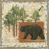 Black Bear Posters by Anita Phillips