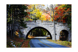 Country Road in Acadia, Maine Photographic Print by George Oze